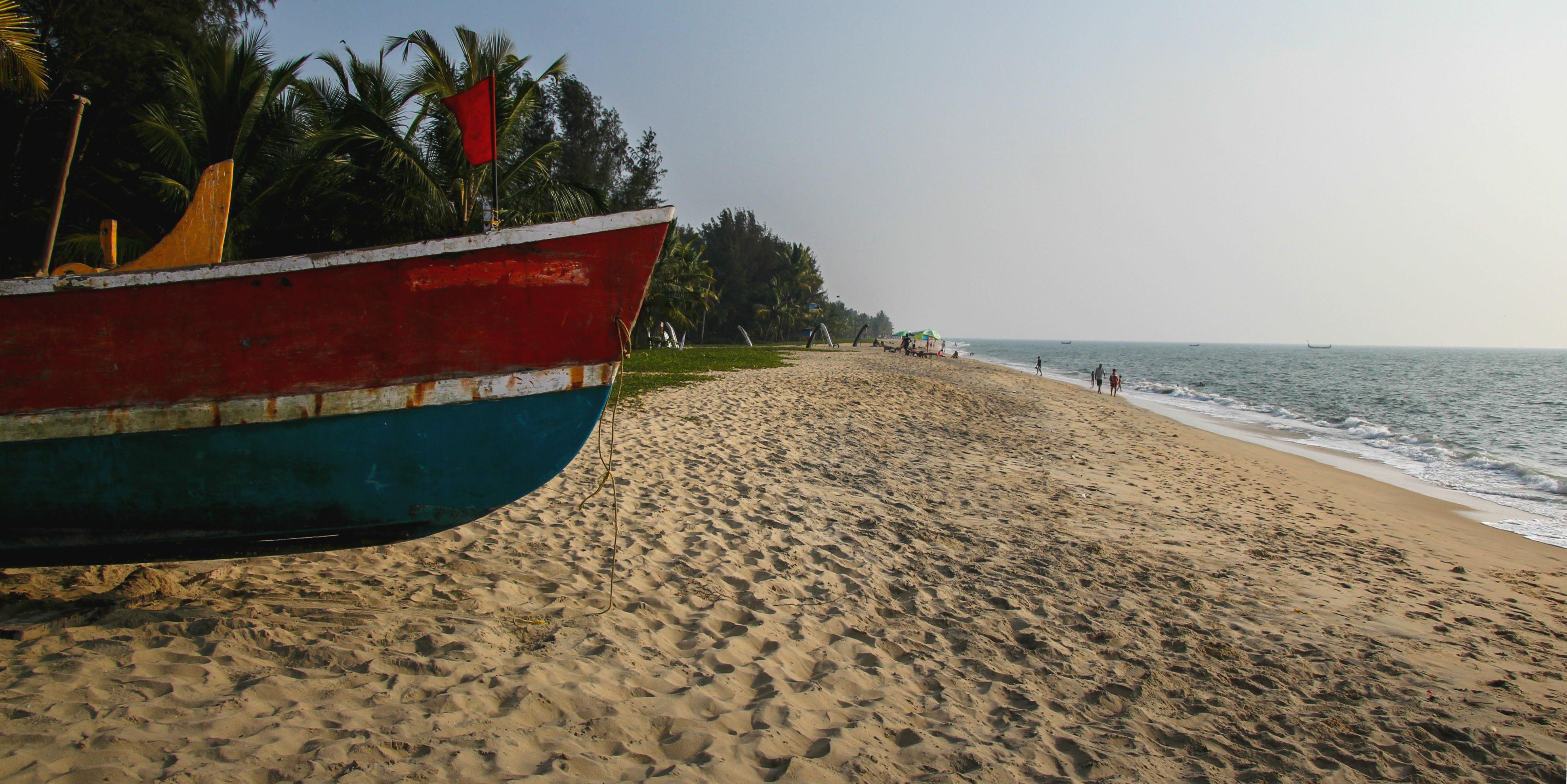 Volunteer in Kerala