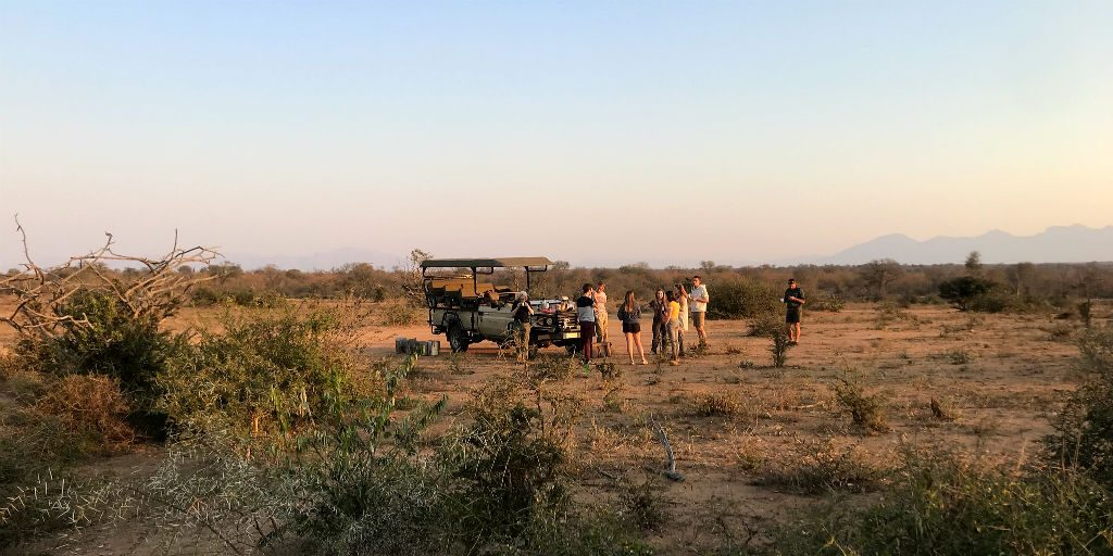 The fortress conservation allows the GVI team to be able to keep track of the cheetahs without inflicting any captivity like conditions.