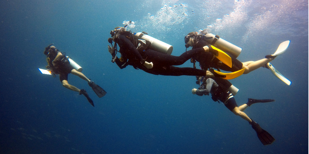 Divers underwater in the Seychelles
