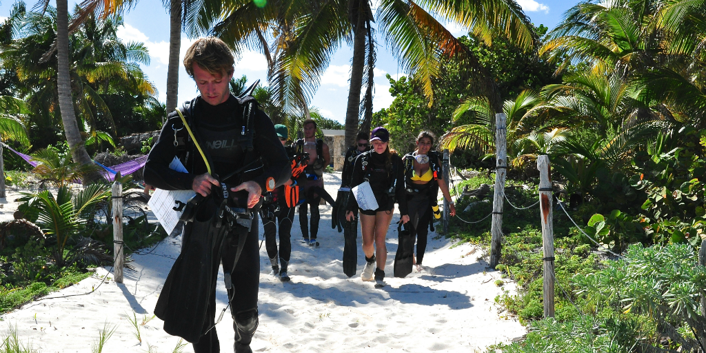 Become a padi divemaster with GVI