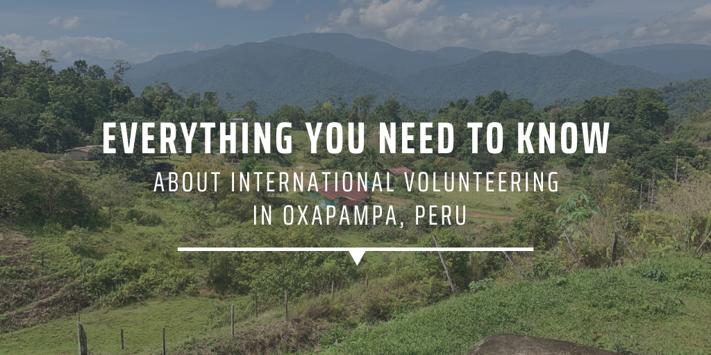 Everything you need to know about international volunteering in Oxapampa, Peru