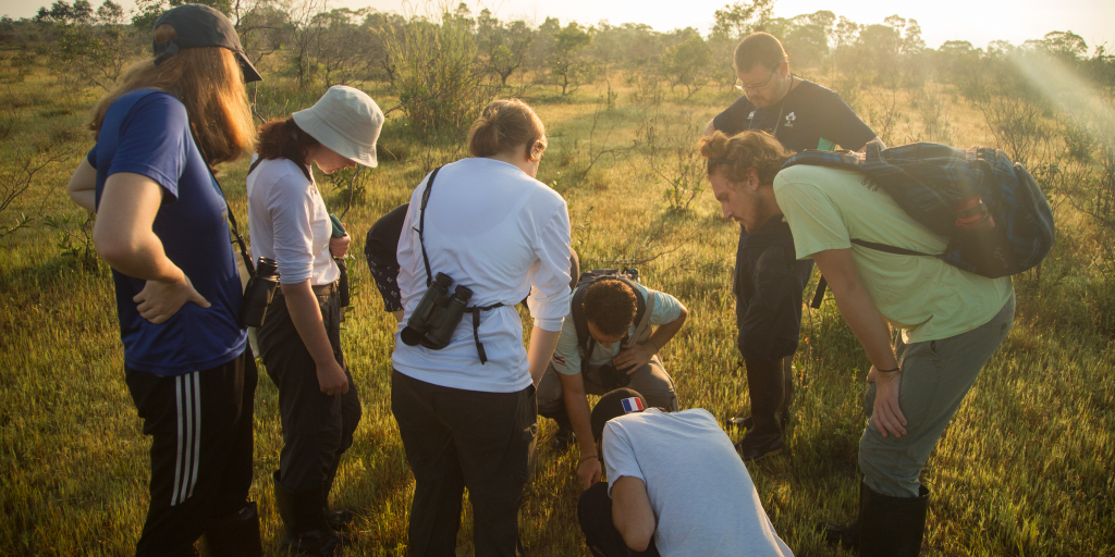 The GVI volunteers examine the grass during a conservation internship abroad.