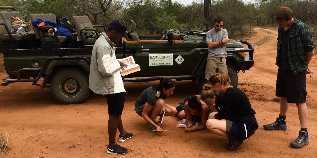 The GVI volunteers take a look at the soil during a wildlife conservation internship
