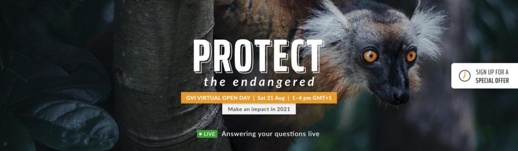 GVI Global Virtual Open Day