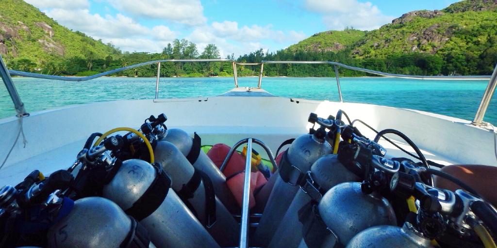 Oxygen tanks are mandatory for scuba dive training.