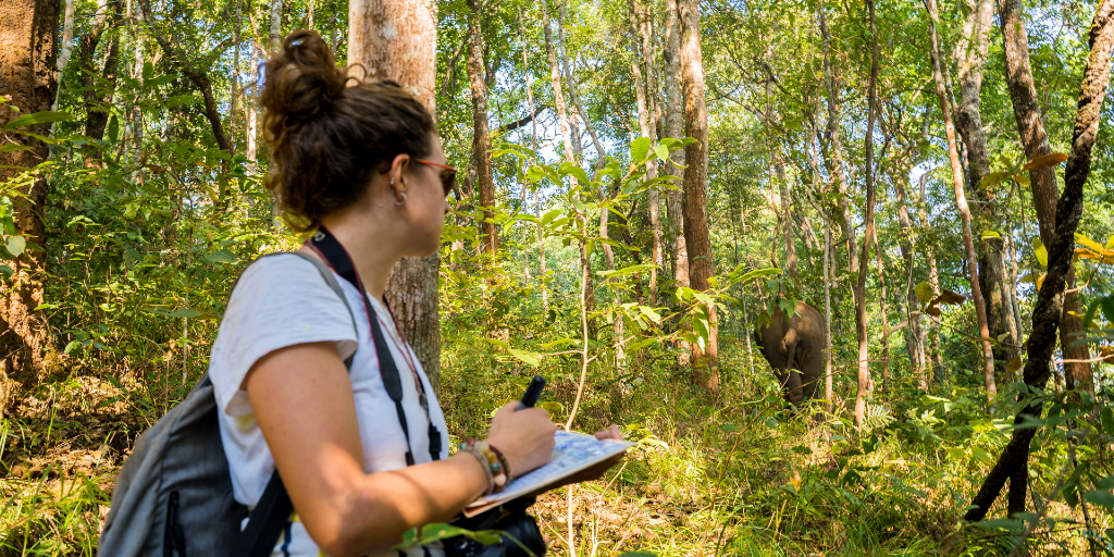 Taking a gap year can help you gain a broader perspective.