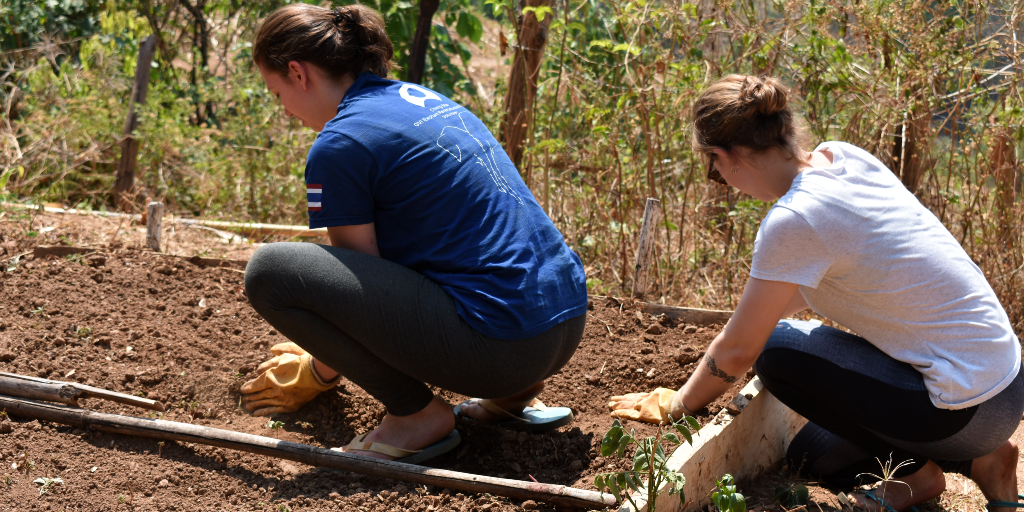 GVI volunteers plant seeds as part of the community garden project.