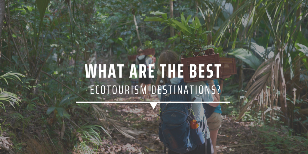 What are the best ecotourism destinations?