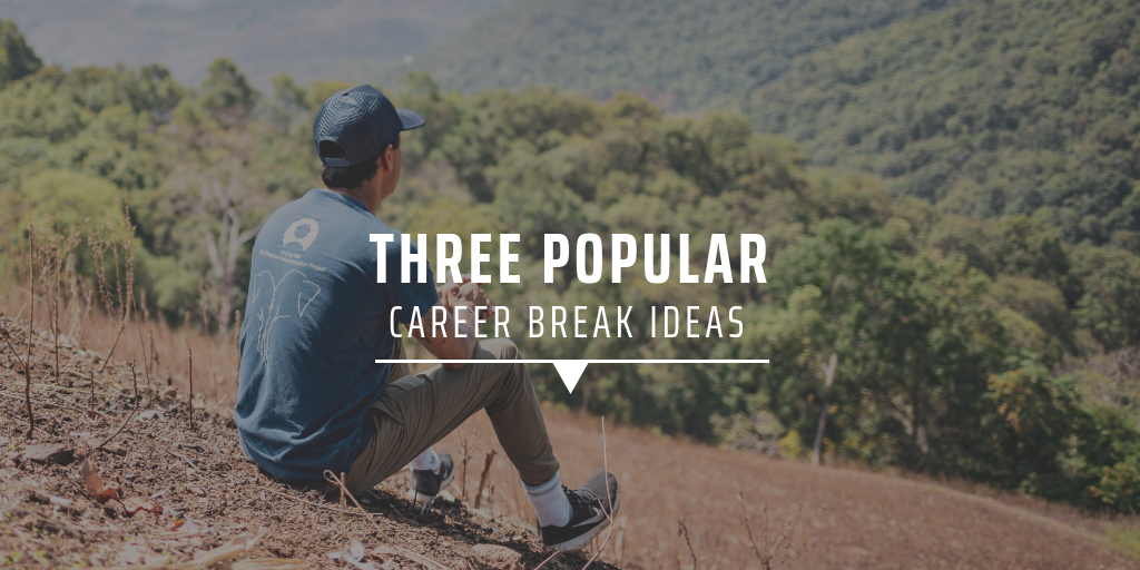 Three popular career break ideas