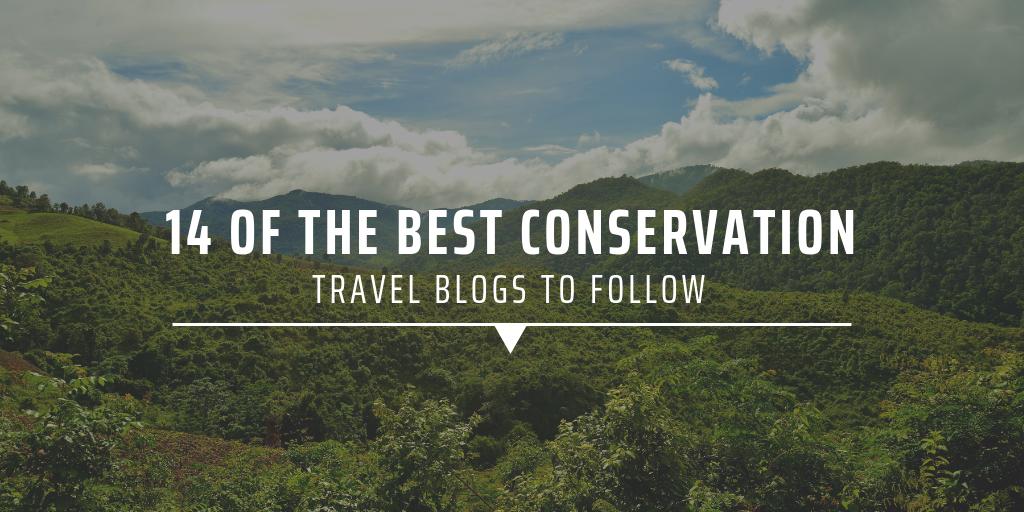 14 of the best conservation travel blogs to follow