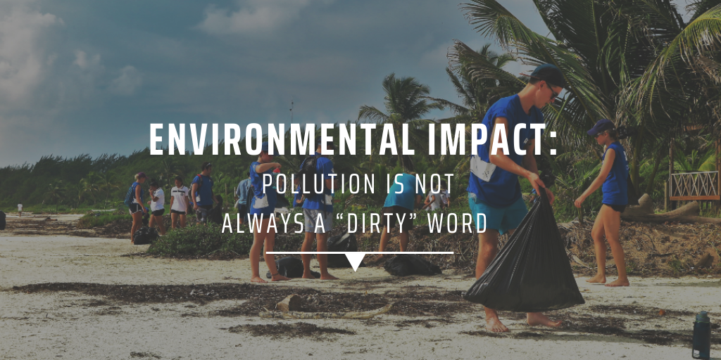 "Environmental impact Pollution is not always a ""dirty"" word"