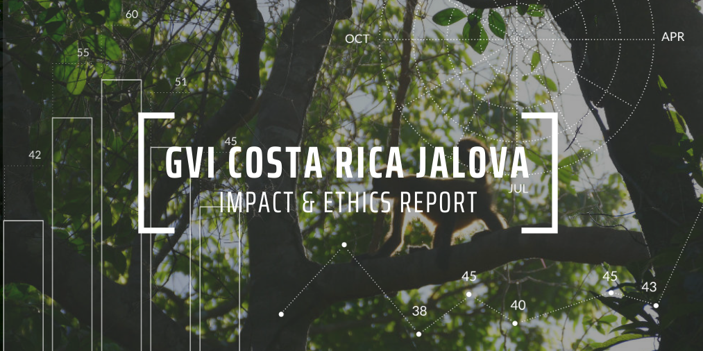 GVI Cosa Rica Jalova - Impact and Ethics article